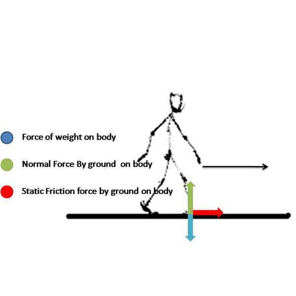 2 1 3 free body diagram bearcat engineeraustin s cameron rh austinscameron weebly com force body diagram of an arbor press force body diagram questions